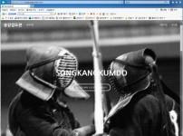 홈페이지 제작유형21.jpg